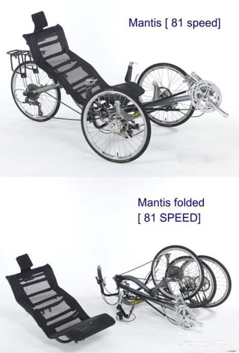 folding Mantis