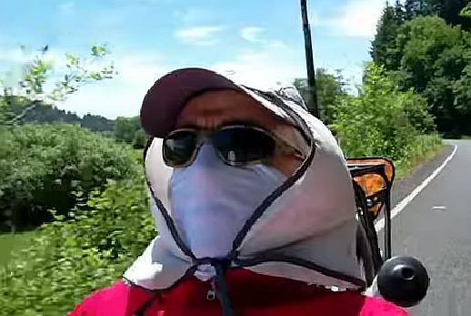 Steve Greene bug protection