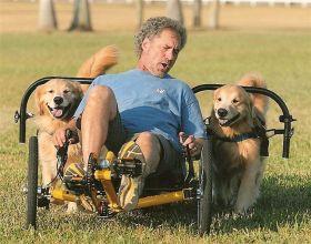dog power x 2 trike