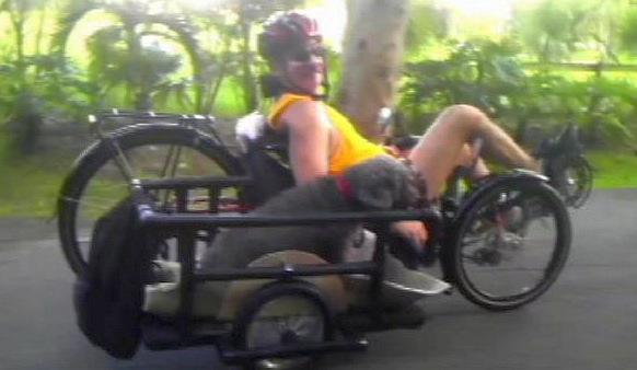 sidecar on trike
