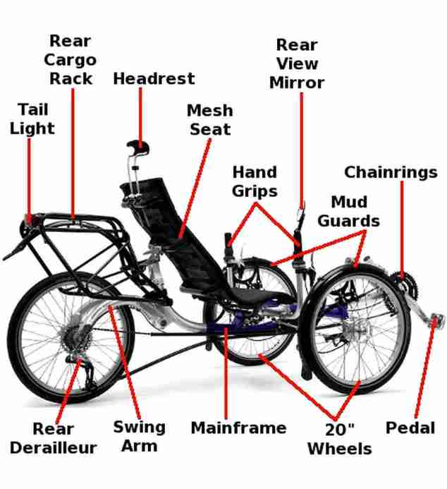 anatomy ICE trike 6