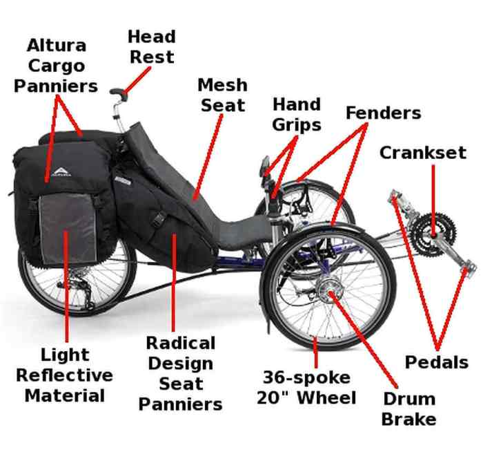 anatomy ICE trike 7