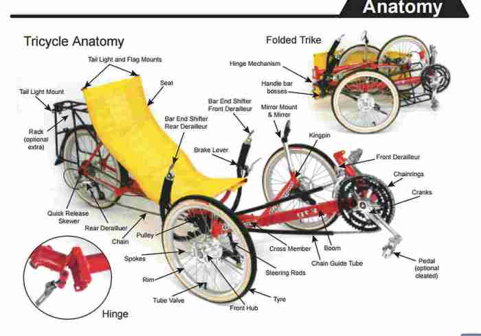 Greenspeed trike anatomy