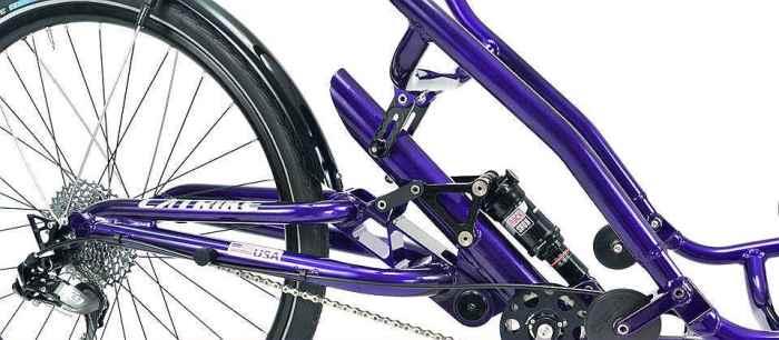 Catrike Dumont rear suspension
