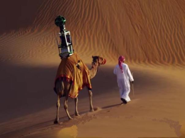 Google Map Street View camel