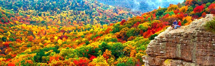 fall colors in valley