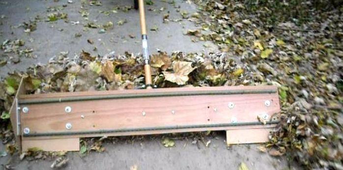 leaf removal 3