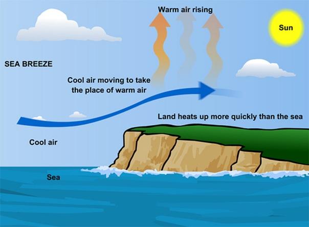 wind generation
