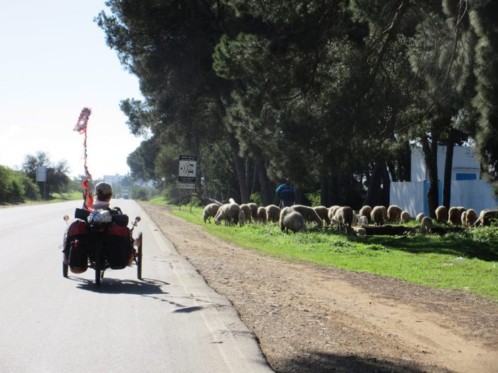 Chuck passing roadside mowing crew