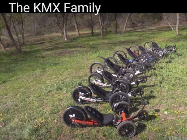 KMX family