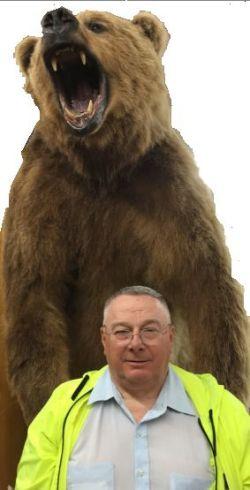 what bear 3