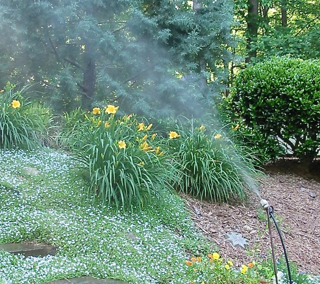 mister for watering vegetation