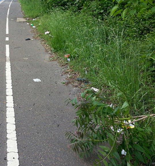 trash along trail 2