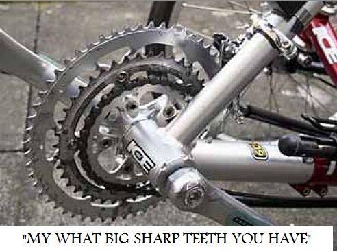 chainring-teeth