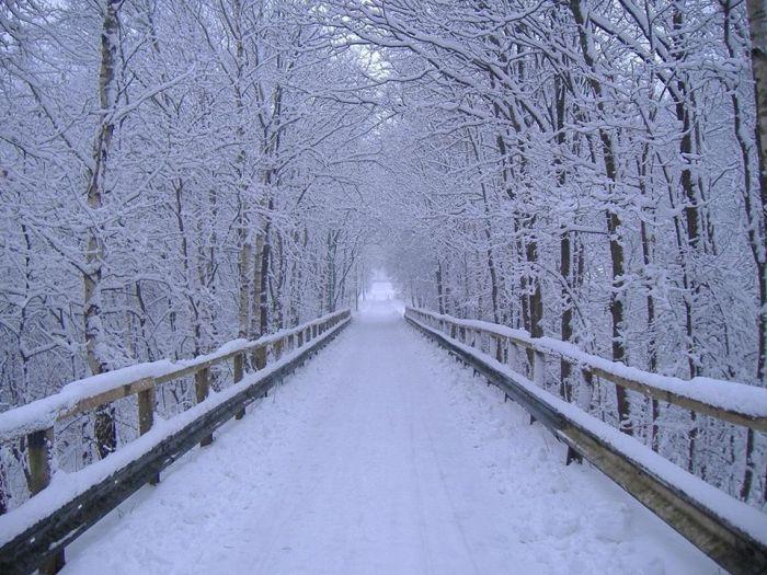 snow-trail