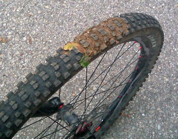 dog-poop-on-bike-tire