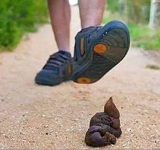 stepping-on-dog-poop