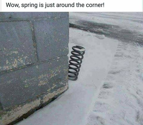 A SURE SIGN OF SPRING
