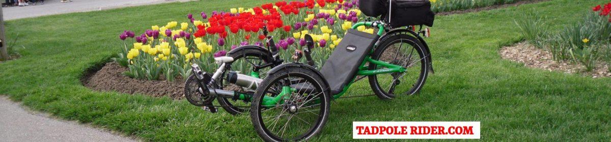 Tadpole Rider